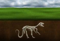 Косточки динозавра, ископаемый, палеонтология, скелет иллюстрация вектора