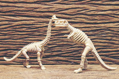 Косточки динозавра на деревянной предпосылке Стоковая Фотография