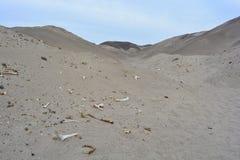 Косточки на пустыне Nazca, Перу Стоковое фото RF
