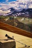 Костыли на открытом воздухе на природе стоковые изображения rf