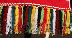 костюмы Люд-стиля от Болгарии Стоковые Фото