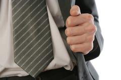 костюм бизнесмена s Стоковая Фотография RF