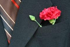 костюм гвоздики стоковые фото