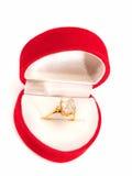 костюм кольца человека захвата Стоковое Изображение