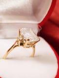 костюм кольца человека захвата Стоковое Изображение RF
