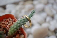 костюм кольца человека захвата Стоковое Фото