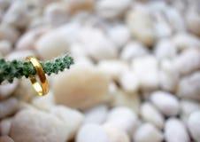 костюм кольца человека захвата Стоковые Фотографии RF