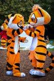 Костюм тигра Стоковая Фотография RF