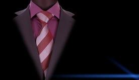 Костюм человека Брайна Стоковые Фотографии RF