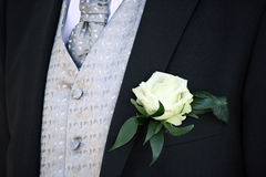 костюм groom Стоковые Фото