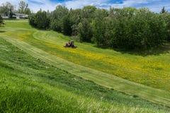 Кося трава лужайки в открытой местности парка города Стоковые Изображения