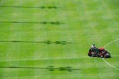 Кося трава Стоковые Фотографии RF