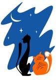 2 кота в ноче Стоковая Фотография