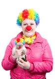 котенок клоуна смешной стоковое фото rf