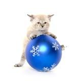 Котенок младенца и орнамент рождества Стоковая Фотография RF