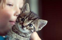 Котенок на плече мальчика стоковая фотография