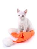 котенок рождества крышки Стоковое фото RF