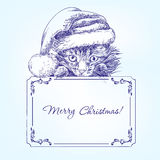 Котенок рождества в нарисованной руке шляпы чулка Санты Стоковые Фото