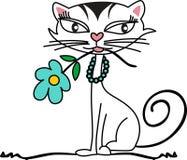 котенок цветка Стоковое Изображение