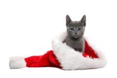 котенок шлема рождества Стоковые Фотографии RF