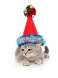котенок шлема рождества Стоковая Фотография RF
