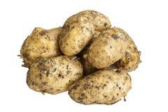 , который слезли картошки на белой предпосылке Стоковая Фотография