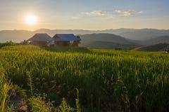 Коттедж в поле Стоковое Фото
