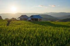 Коттедж в поле Стоковая Фотография RF