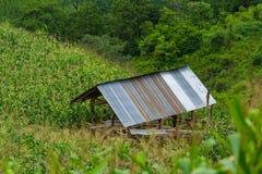 Коттедж в ферме на горе стоковые изображения rf