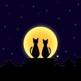 Коты влюбленности Стоковая Фотография
