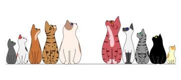 Коты в ряд, смотрящ центр иллюстрация штока