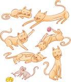 Коты и иллюстрация мыши Стоковое Изображение