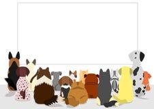 Коты и собаки собирают смотреть пустую доску иллюстрация штока