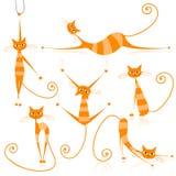 коты конструируют грациозно помеец striped ваше иллюстрация вектора