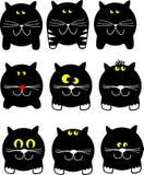 коты круглые Стоковые Фотографии RF
