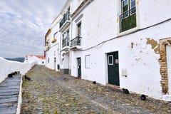 Коты на типичной узкой части мостить улицу в древнем городе m Стоковое Изображение