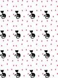 коты птиц Стоковое Фото