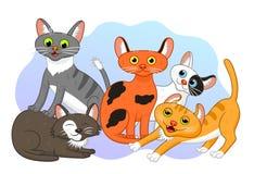 Коты шаржа Стоковое Изображение RF