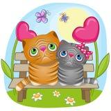 Коты любовников Стоковая Фотография
