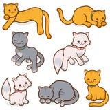 Коты vector комплект Стоковые Изображения