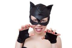 кот агрессии представляет woma Стоковое Изображение RF