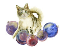 Кот акварели с шариками рождества Стоковое фото RF