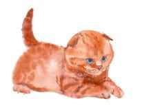 Кот, акварель, эскиз, краска, животные, иллюстрация Стоковые Изображения RF