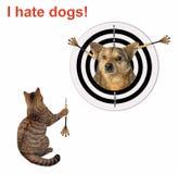 Кот бросая дротик стоковое изображение