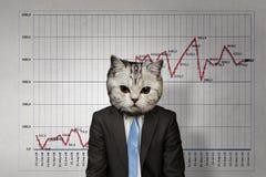 Кот в деловом костюме Мультимедиа Стоковое Изображение RF