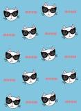 Кот в солнечных очках на голубой предпосылке Стоковое Изображение
