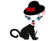 Кот в шлеме Стоковое Фото