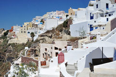 кот Греция Стоковое Фото