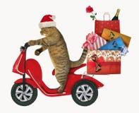 Кот едет мопед с сумками подарка рождества стоковые фотографии rf