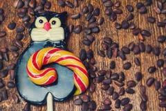 Кот леденца на палочке карамельки Стоковая Фотография RF